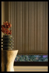 Hunter_Douglas_Alustra_Screen_Shades_in_Denver.jpg